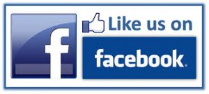 Bloated Facebook icon button